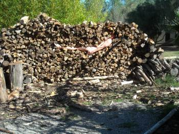 holzstappel_getting_in_wood