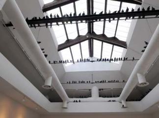 biennale_arte_2011