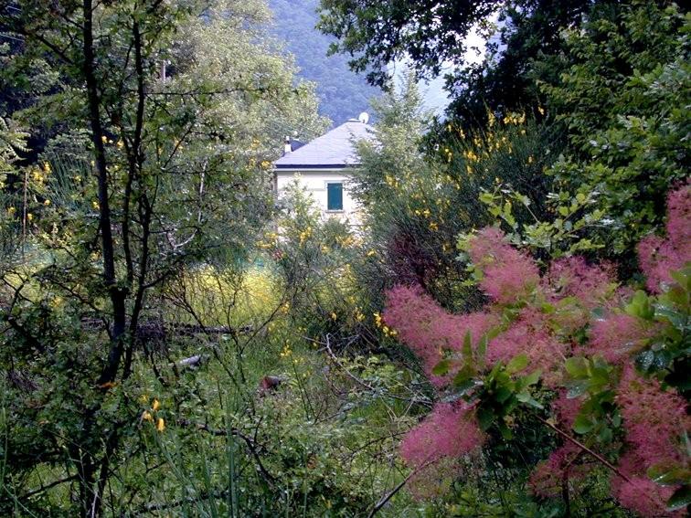 casa--bosco-piccolo