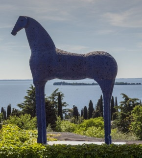 cavallo-paladino324-290