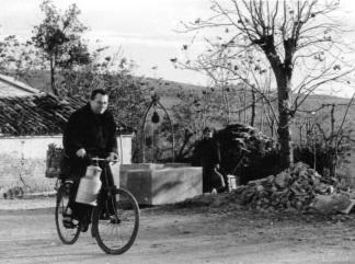 Bicicletta 324 241