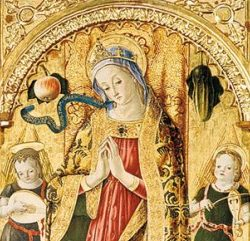 vittore-crivelli-324-241